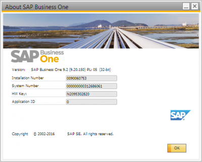 About SAP Business One